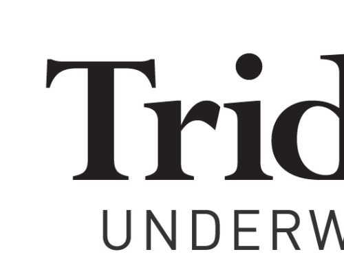 Trident expands offer